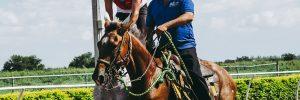 Conheça Todas as Regras do Horseball