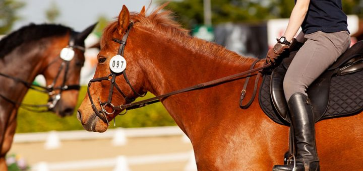 Imagem em destaque Importância do Mercado de Apostas para o Desenvolvimento do Horseball 720x340 - Importância do Mercado de Apostas para o Desenvolvimento do Horseball