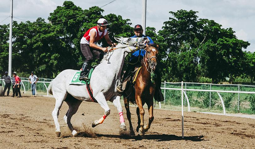 Postar imagem Conheça Todas as Regras do Horseball Equipas - Conheça Todas as Regras do Horseball