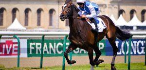 Postar imagem Euro 2009 – Um Resumo da Competição Cavalo e homem 300x144 - Postar-imagem-Euro-2009-–-Um-Resumo-da-Competição-Cavalo-e-homem