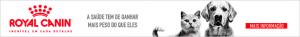 anuncio header 300x37 - anuncio-header